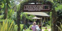 tamambo-karen-blixen